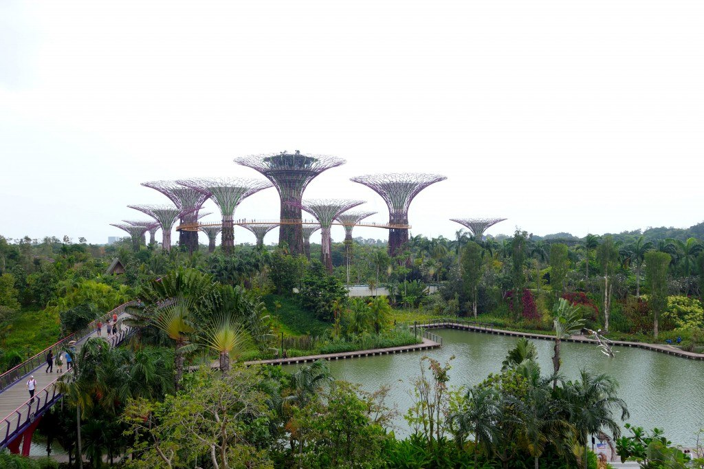 Gardens By The Bay Backpacking In Singapore On A Budget