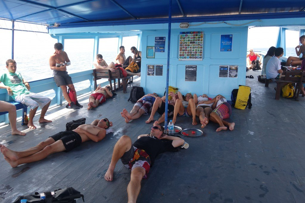 Resting Up Between Dives Up On The Deck.