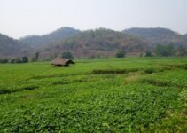 Trekking To Hill Tribes In Hsipaw