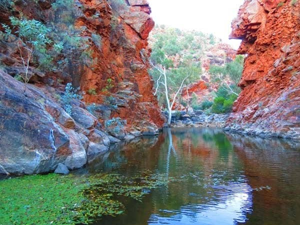 Overland Australia Travel Experience Gorge