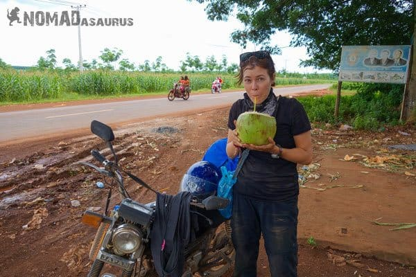 Cambodia Motorcycle Adventure Kampong Thom Kampong Cham Coconut