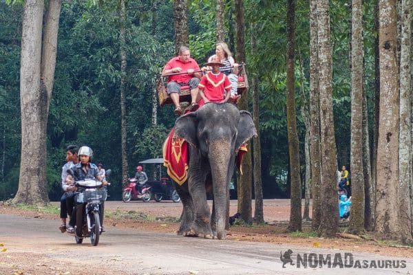 Elephant Tour Trek Sen Monorom Mondulkiri Cambodia Angkor Wat Temple Tourists Riding