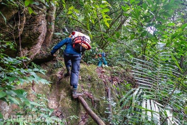 Jazza Trekking Tu Lan Caves Oxalis Expedition
