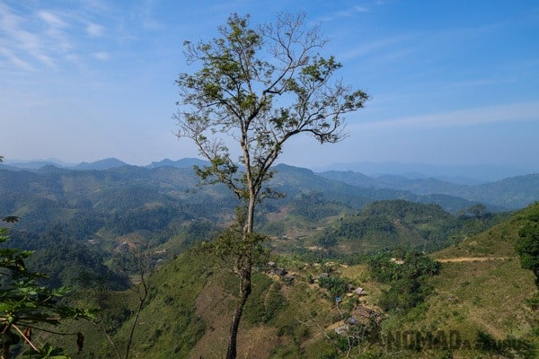 Tree View Ba Be National Park Lake Mr Linhs Homestay Trekking