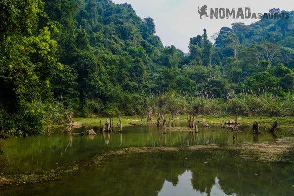 Lake View Cuc Phuong National Park Waste Litter Trash