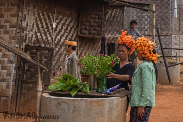Flowers Trekking From Kalaw To Inle Lake Myanmar Burma