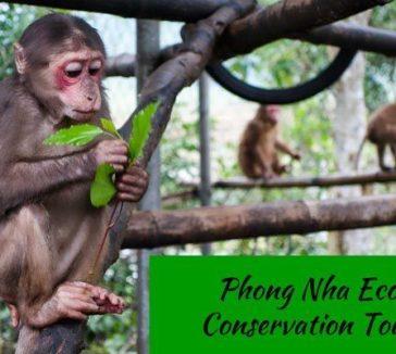 Phong Nha Hai's Eco Conservation Tour Vietnam