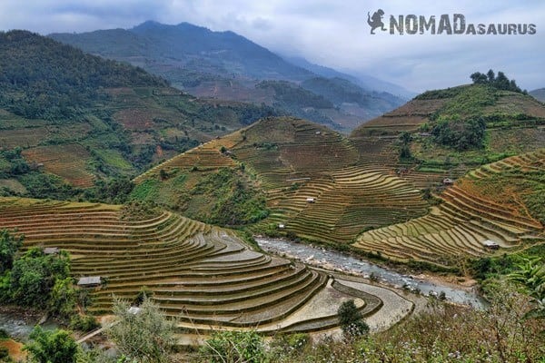 Rice Terraces Than Uyen Northern Vietnam Motorcycle Adventure North RIding Motorbike Ha Giang