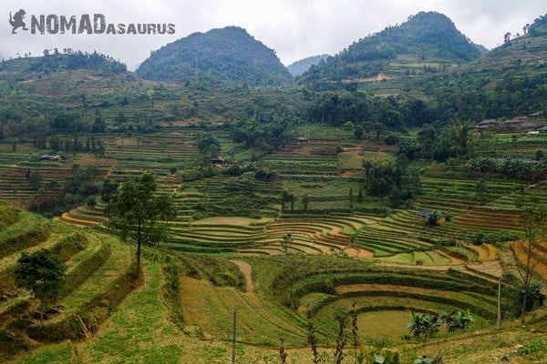 Xin Man Rice Fields Northern Vietnam Motorcycle Adventure North Riding Motorbike Ha Giang