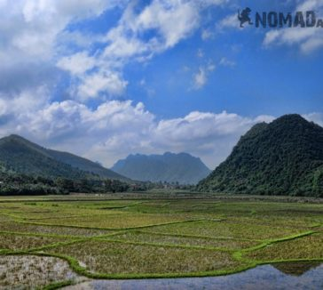 Rice Fields Photos That Prove Why Vietnam Is Awesome