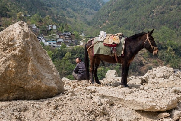 Horse Man Tiger Leaping Gorge Trekking Guide Yunnan China