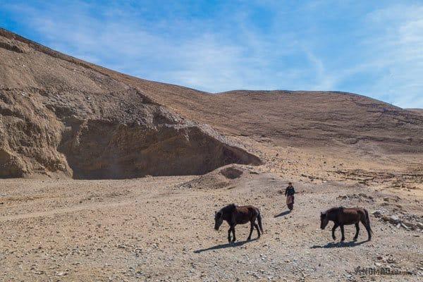 Nomads HorsesTibet Overland Route Shangri La To Chengdu Kham Province Travel