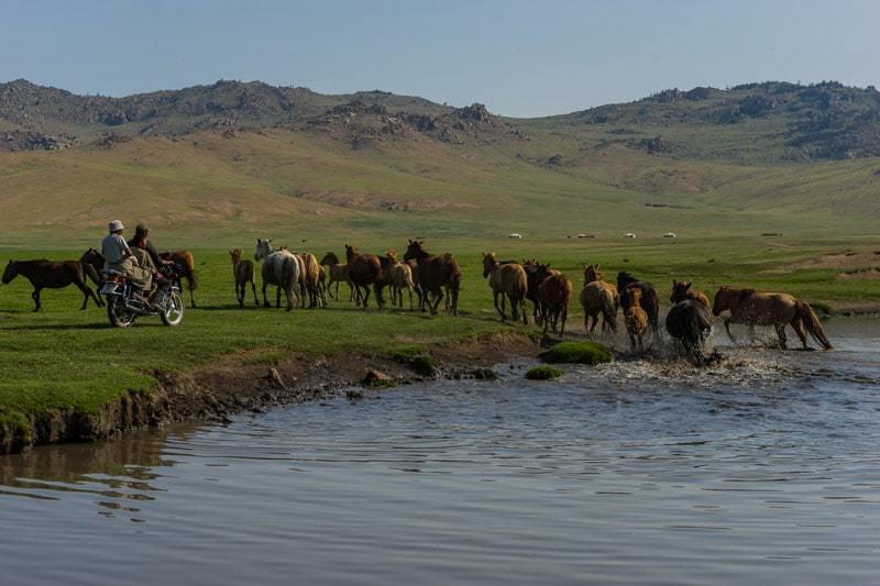 Motorbike Nomadic Family Nomad Life Mongolia Selena Travel Gobi Desert Tour