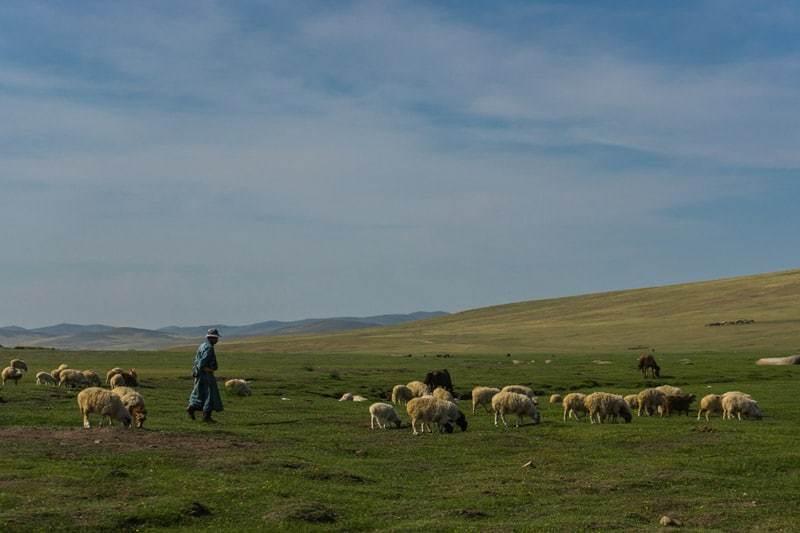 Nomadic Family Nomad Life Mongolia Selena Travel Gobi Desert Tour