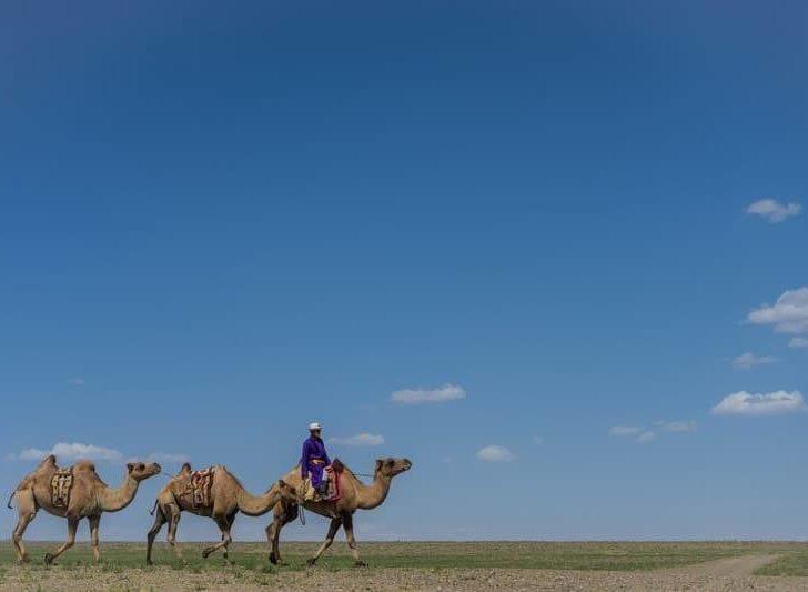 Photo Journal Of Our Gobi Desert Tour