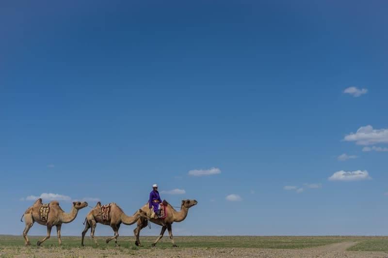 Camel Riding Gobi Desert Tour Mongolia Photo Journal Selena Travel