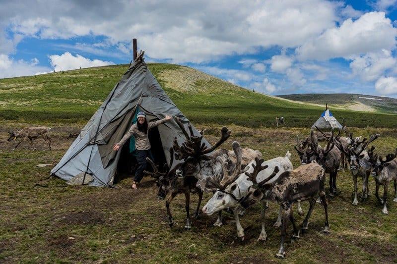 Teepee Tsaatan Dukha Reindeer Herders Mongolia