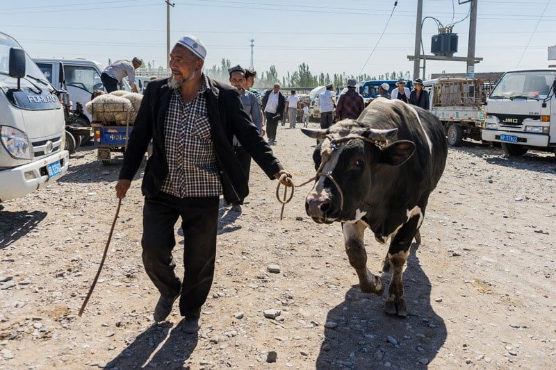 Sunday Livestock Bazaar Market A Day In Kashgar City Tour China