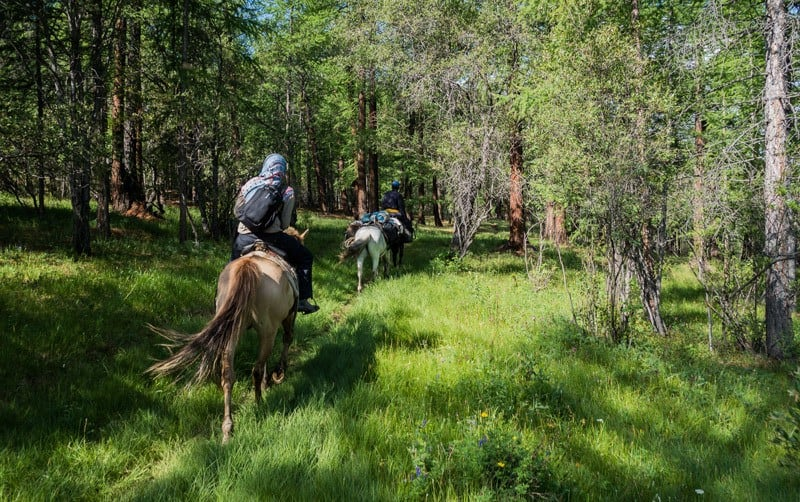 Horse Trek Tsaatan Dukha Reindeer Herders Mongolia