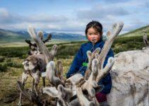 Mongolia's Mystical Tsaatan Reindeer People