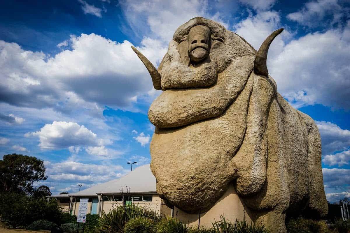 Big Merino Goulburn New South Wales Road Trip