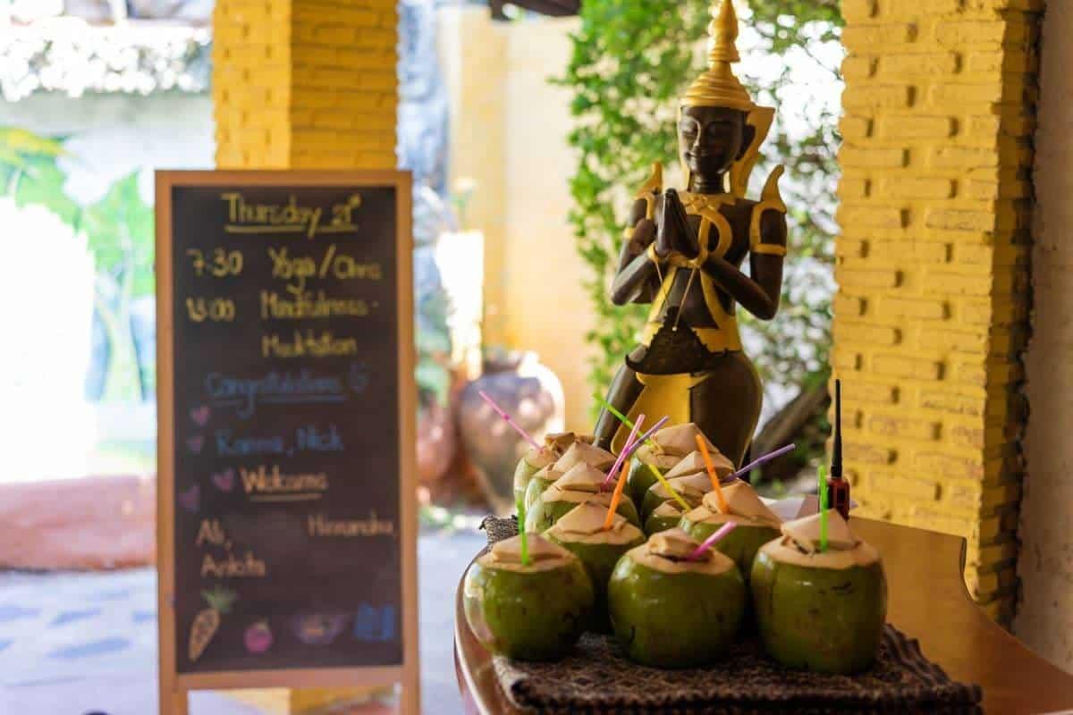 Coconuts Atmanjai Wellness Spa Detox In Thailand