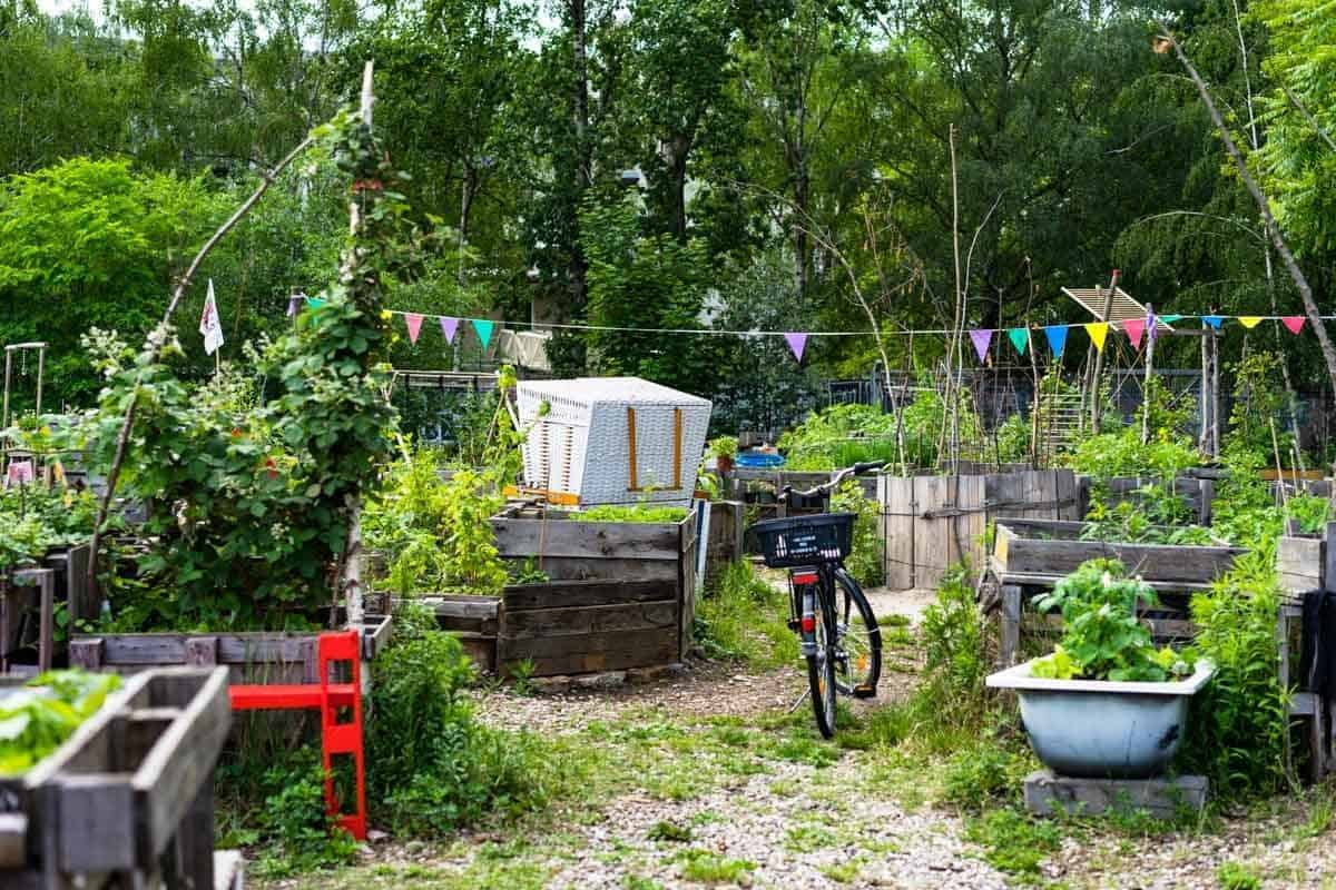 Community Garden 8 Awesome Things To Do In Berlin