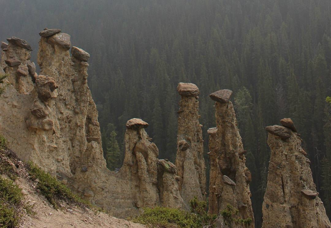 Hoodoos Yoho National Park
