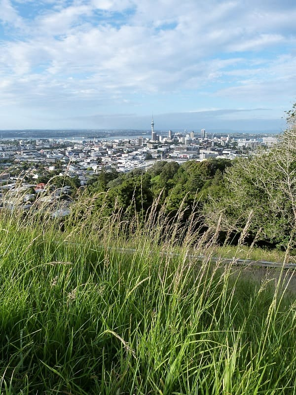 Locals Guide To Auckland