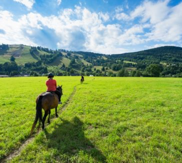 Horse Riding Things To Do In Jeseniky Mountains