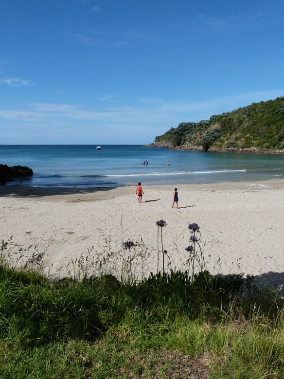 Little Oneroa Beach Locals Guide To Auckland