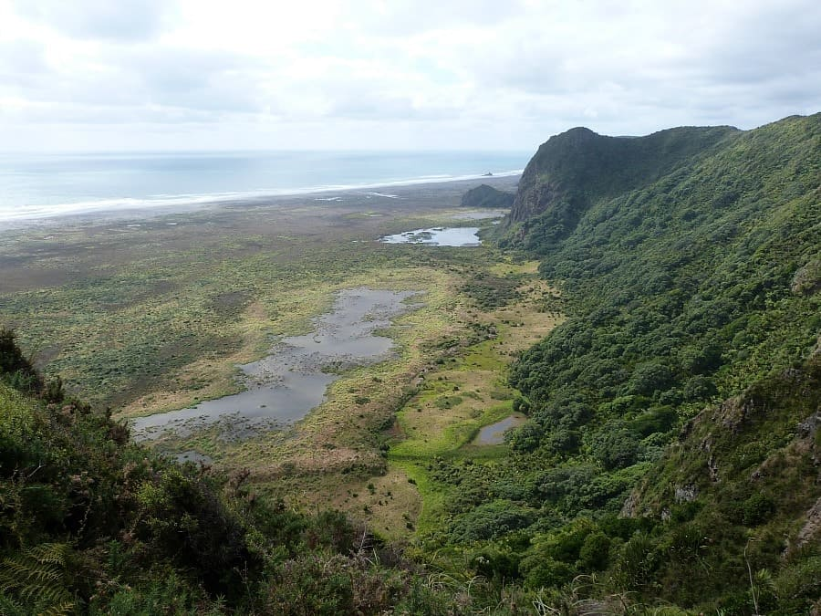 Waitakere Ranges Locals Guide To Auckland