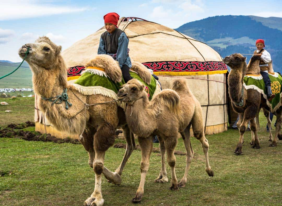 Camels People Of World Nomad Games Kyrgyzstan