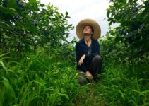 Life Experiences While WWOOFing In South Korea