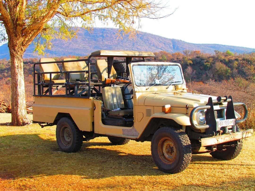 Land Cruiser South African Safari