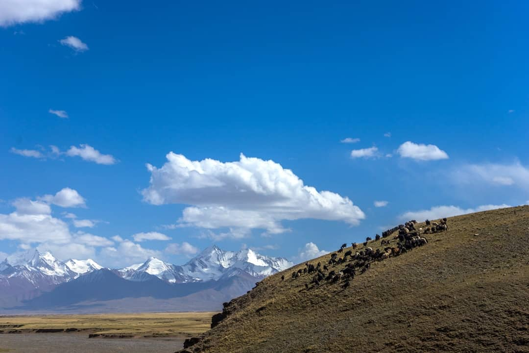 Sary Tash Pamir Highway Adventure