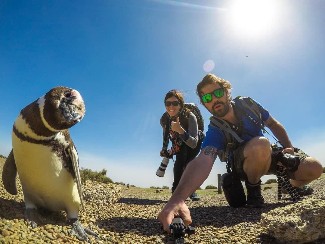 Penguin Selfie Things To Do In Puerto Madryn