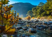 Olympos – The Jewel Of Turkey's Mediterranean Coast