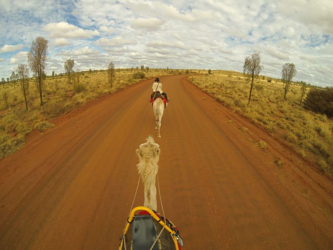 Camels GoPro