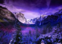 The Best Things to Do in Yosemite in Winter