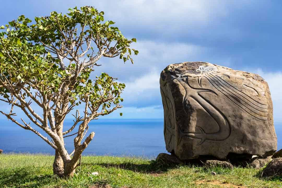 Anthropological Museum Things To Do In Easter Island