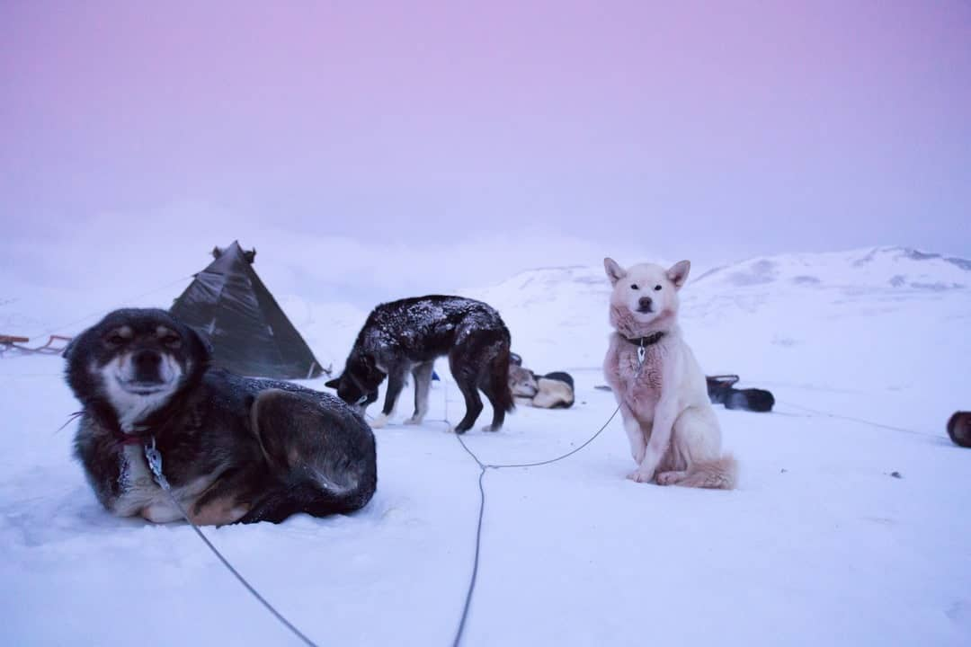 This Is Svalbard In Norway
