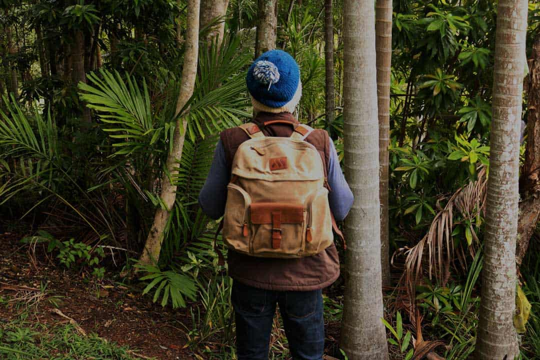 Machir Casual Backpack Collection Review