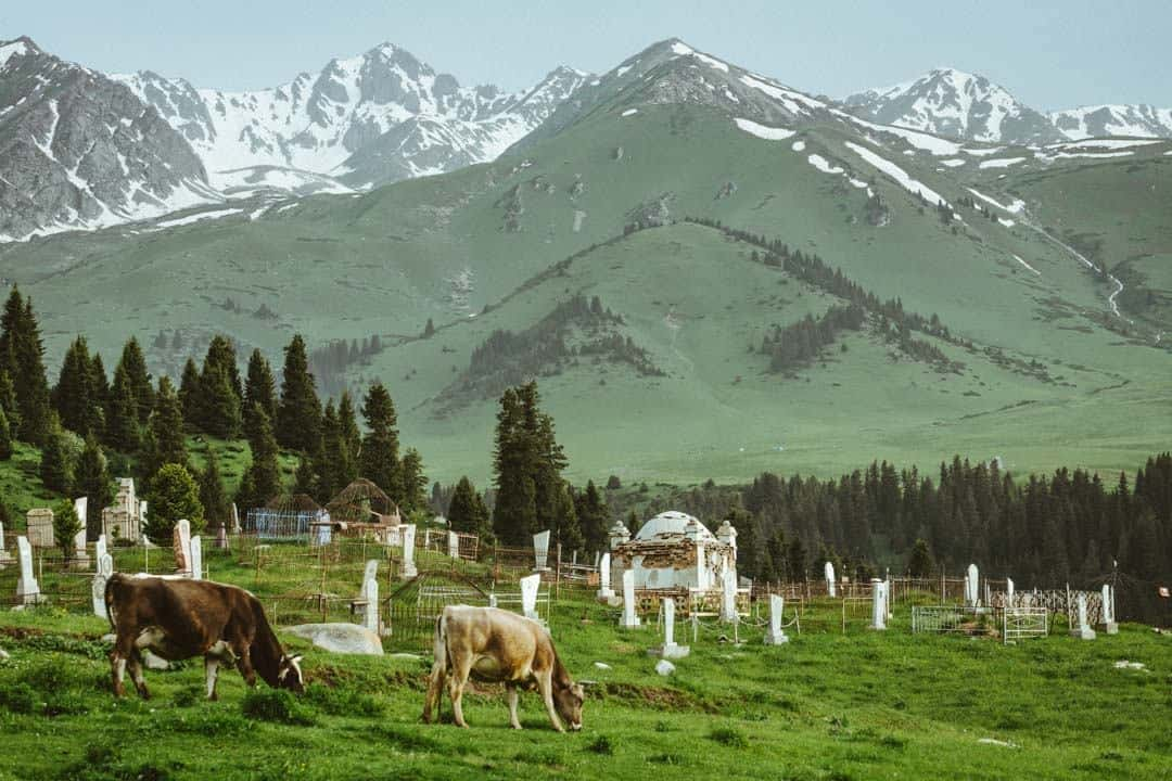 Cemetery Jyrgalan Village Kyrgyzstan