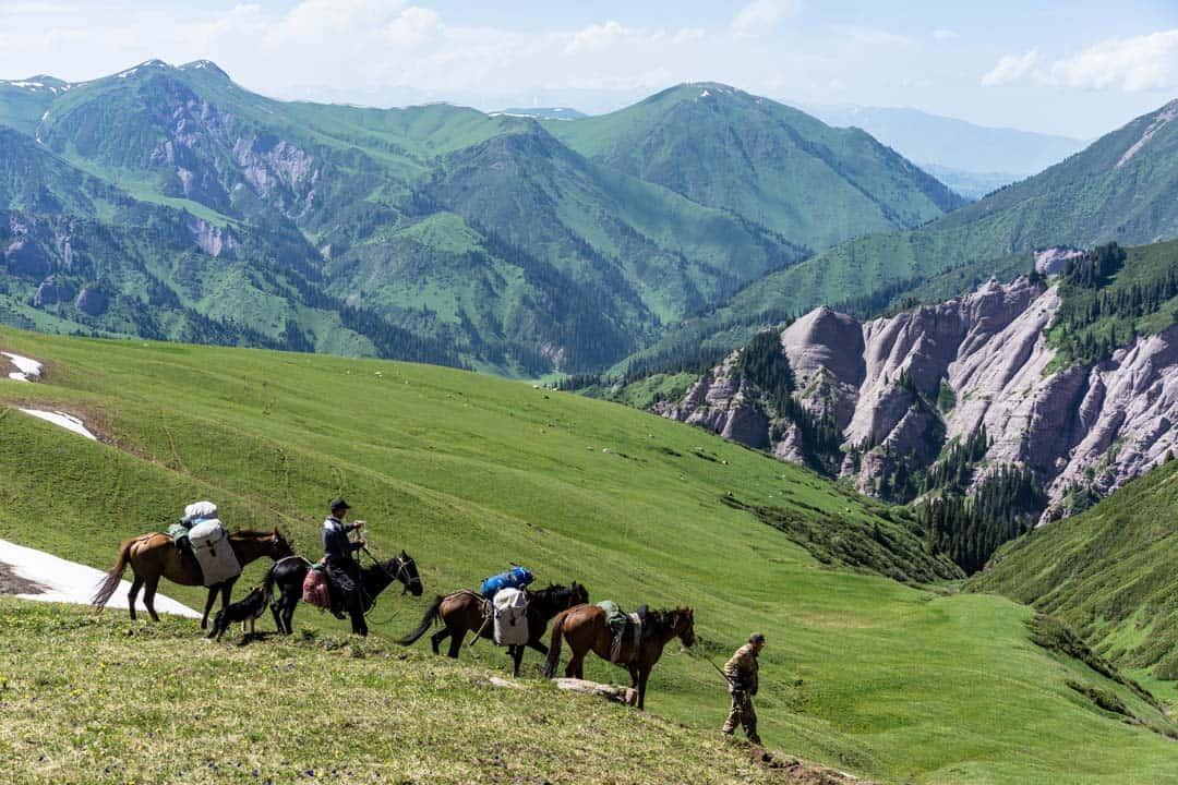 Pack Horses Keskenkija Loop Jyrgalan Trek