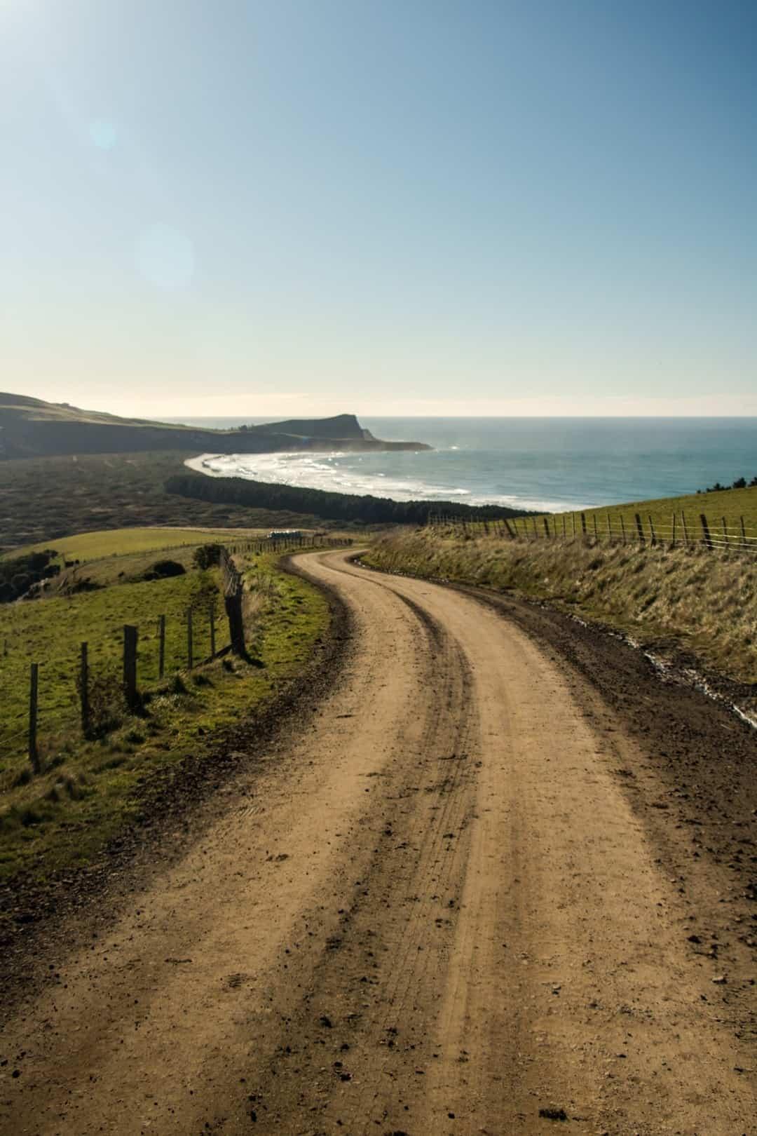 Cape Saunders Adventures Hiking In Otago New Zealand