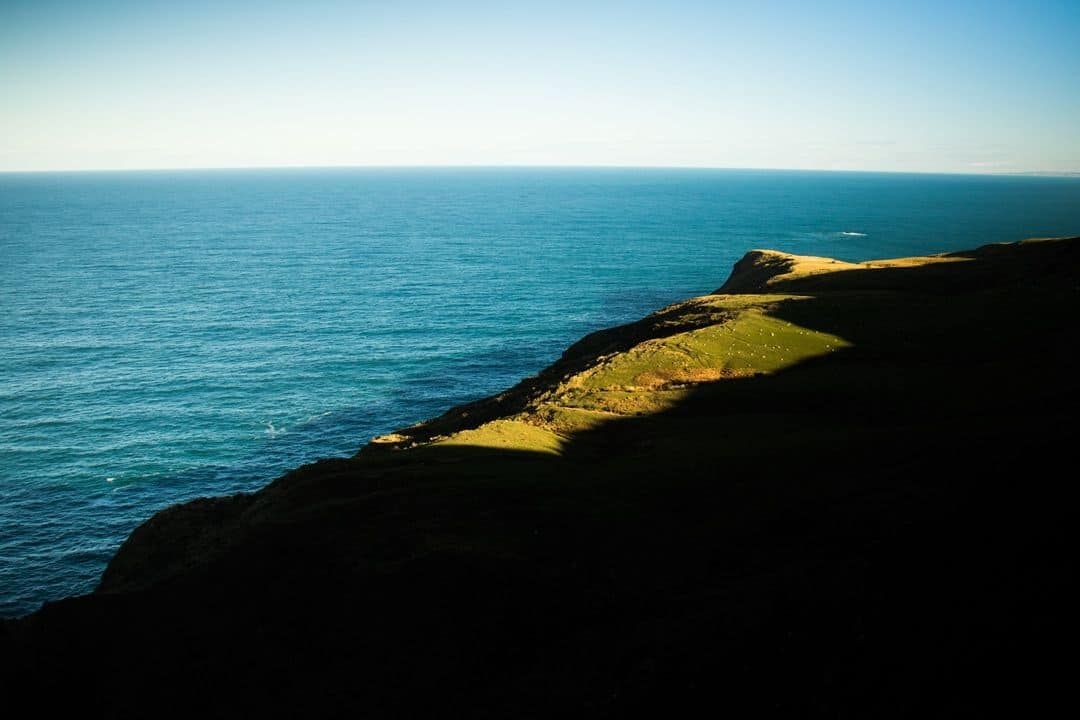 Coastal Views Adventures Hiking In Otago New Zealand