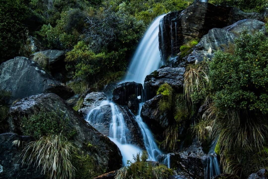 Wye Creek Track Adventures Hiking In Otago New Zealand