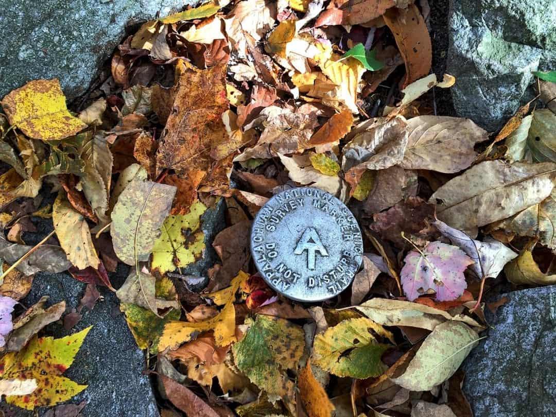 Autumn leaves - Hiking through the Appalachian Trail, USA