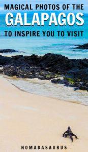 Galapagos Pinterest Image